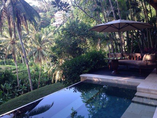 Four Seasons Resort Bali at Sayan: Schwimmbad/Villa