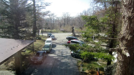 Okunikko Konishi Hotel : 春の芽吹きはこれからでした