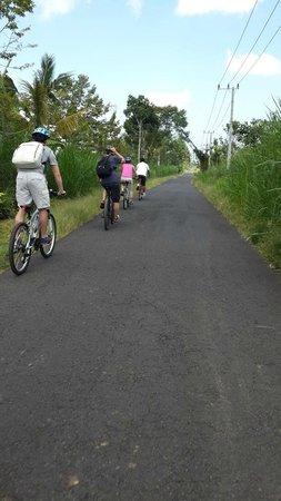 Bali Hideaway Bike