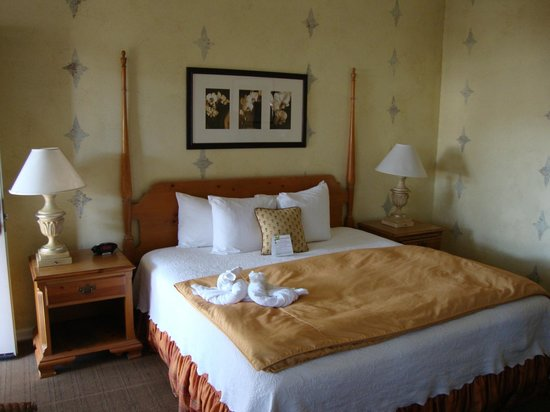 FogCatcher Inn : A standard room