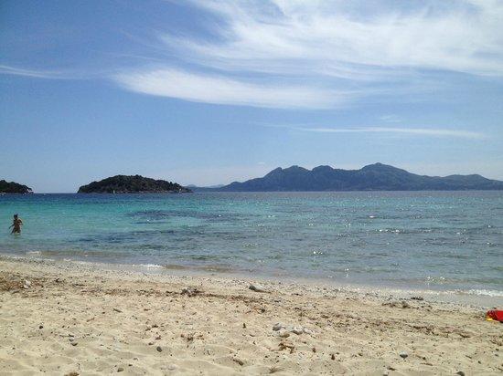 Formentor Playa: fotografía de Playa Formentor, Formentor - TripAdvisor