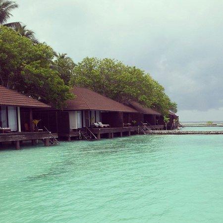 Lily Beach Resort & Spa : lagoon villa