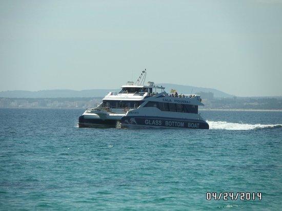 Alcudia Sea Trips by Transportes Maritimos: Brisa