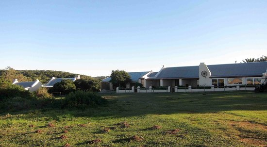 Oyster Bay Lodge : Lodge