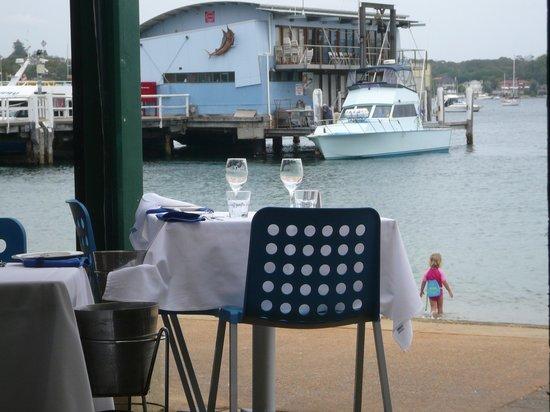 Doyles on the Beach: ビーチのすぐ隣にお席があり海の向こうにはシティも見えます