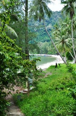 Penang National Park (Taman Negara Pulau Pinang): monkey beach from the start of the lighthouse track