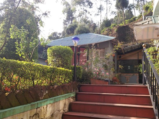 Pavithram Homestay : The view