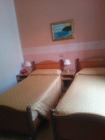 San Gabriele Hotel: Camera doppia standard