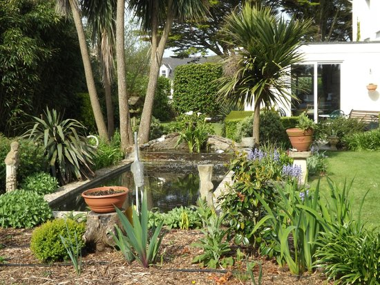 Sunnydene Country Hotel: the pond in the garden