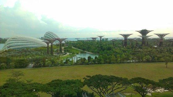 Marina Bay Sands: 窗外景色