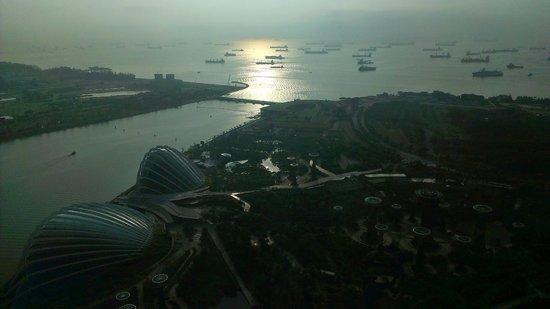 Marina Bay Sands: 空中花園遠眺景色