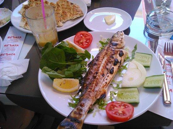 Oz Urfa: best fresh fish!