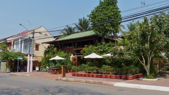 Rikitikitavi: Das Riki von der Straße aus