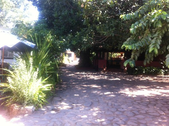 Tabonina Guesthouse: grounds