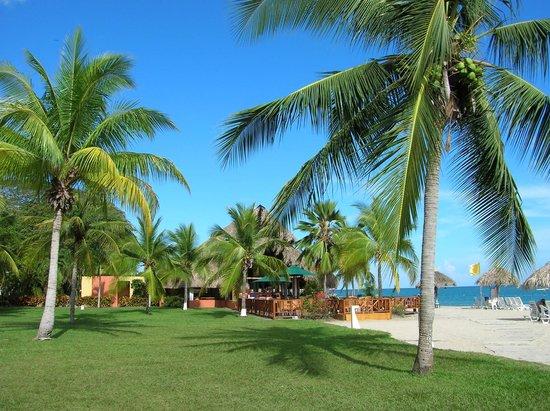 Royal Decameron Beach Resort, Golf & Casino : Playa