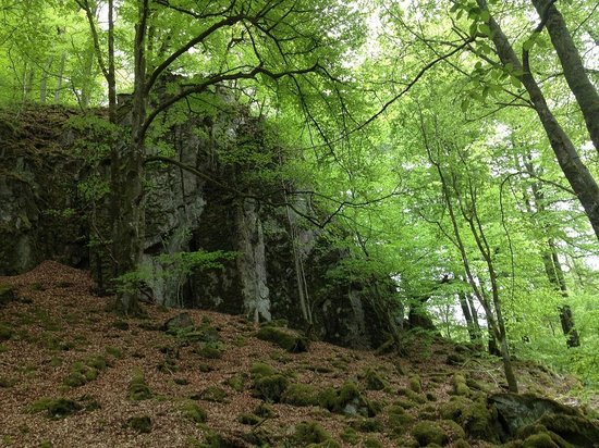 Soderasens National Park: Klippevæg ved Skärån, Söderåsen Nationalpark, Skåne
