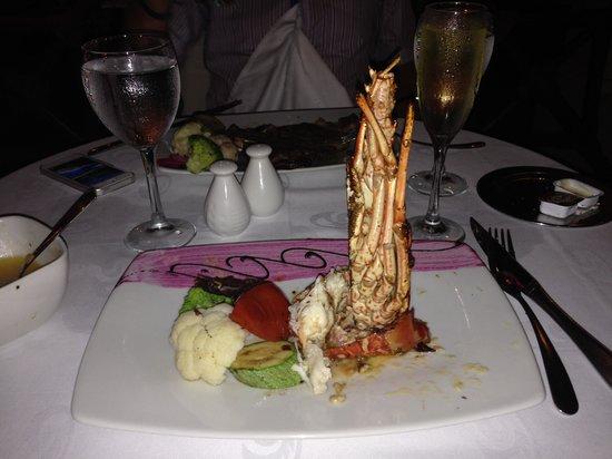 TRS Yucatan Hotel: grilled lobster @ El Jardin
