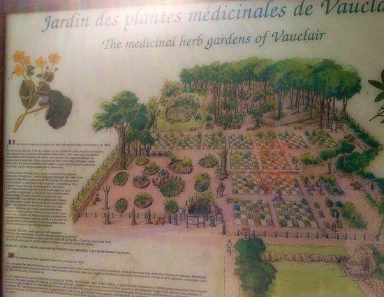 Abbaye de Vauclair : Jardin aux simples : plan
