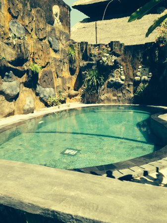 Agung & Sue Watering Hole II: The swimming pool