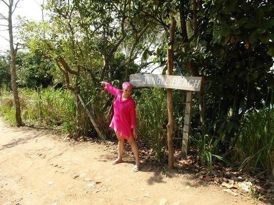 Jungle Beach: Дорога на пляж