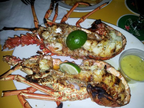 Lee's Roadside Grill: Delicious Grilled Lobster