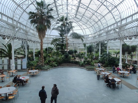 People's Palace and Winter Gardens : blick ins gewächshaus vom museum