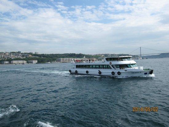Bosphorus Strait: 行き交うクルーズ船