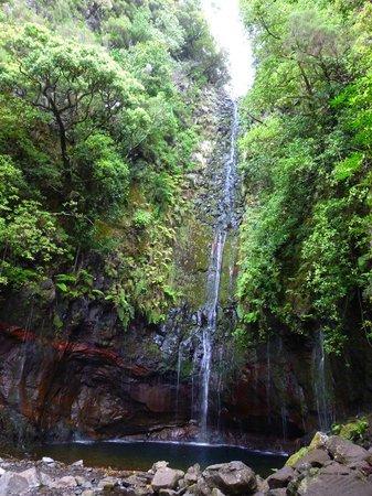 Madeira, Portugal: 25 fontaines