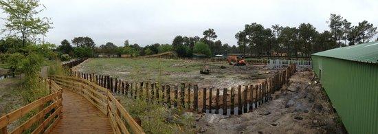 Zoo Bassin D'Arcachon : Triste vue en entrant dans le zoo...