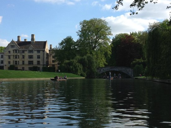 Scudamore's Punting Company: View from the boat.