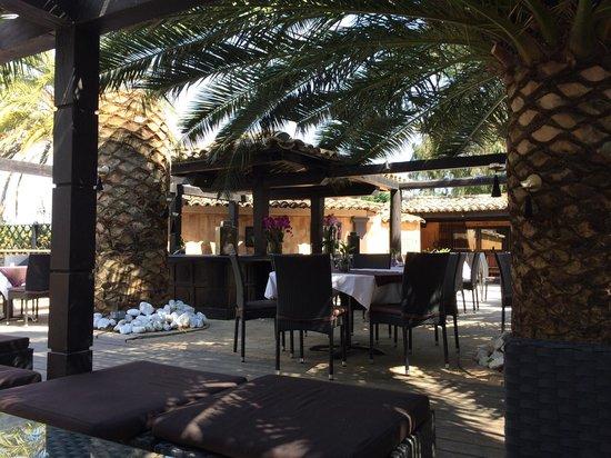 Hotel Saint Amour La Tartane : Au Calme Sous Les Palmiers