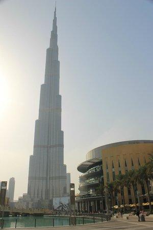 The Dubai Mall : Buji Khalifa