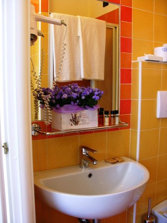Hotel Villa Aurora : view of the bathroom of the standard lakeview room