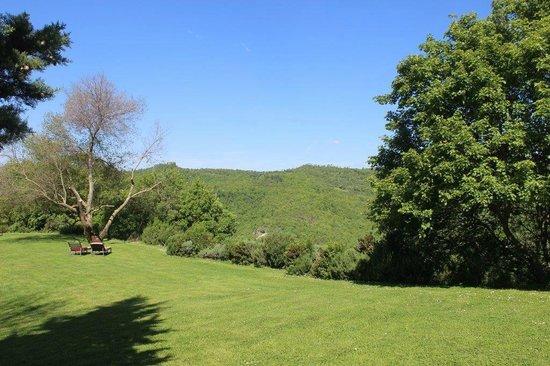 Locanda del Gallo: le colline