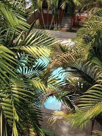 Sallamai Resort : pool