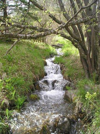 Photo de la vallée de Freissinières par l'établissement Les 5 Saisons