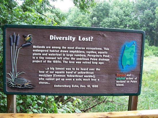 Fish Point Nature Reserve: Signage off viewing platform