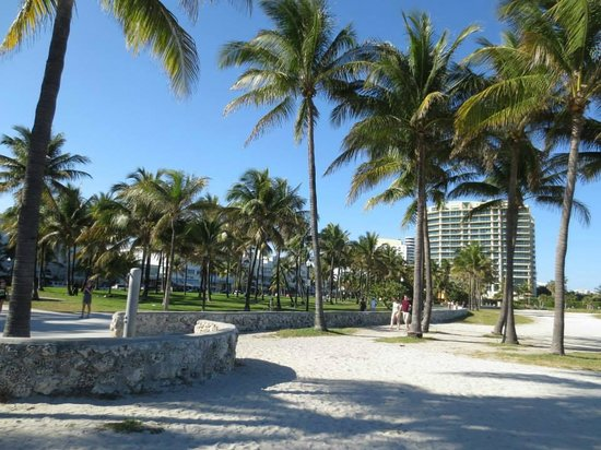 South Beach : lungomare paradisiaco