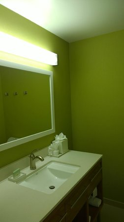 Home2 Suites by Hilton San Antonio Downtown - Riverwalk: Bathroom