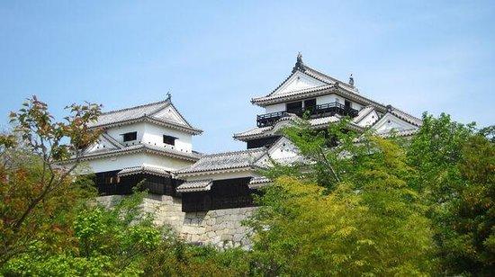 Matsuyama Castle: お城