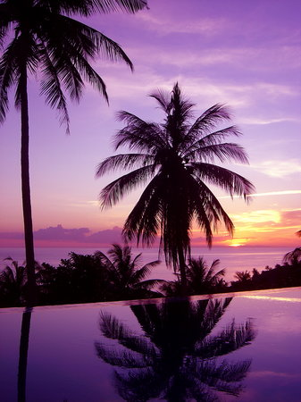 The Rocks Villas : Sunset at the pool