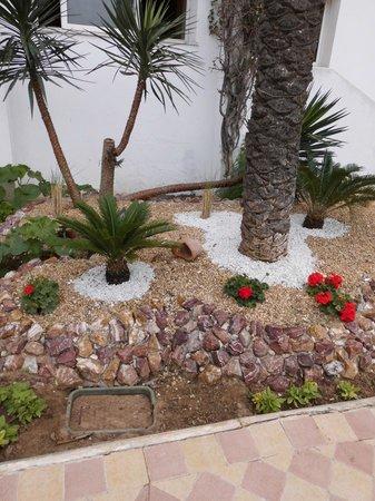 Marhaba Royal Salem: the yard