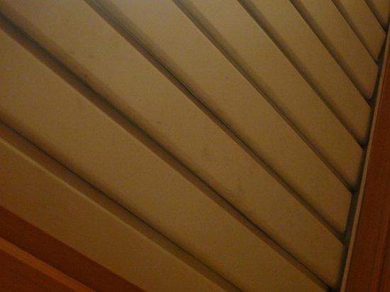 Melia Palas Atenea : Manchas en el techo de entrada