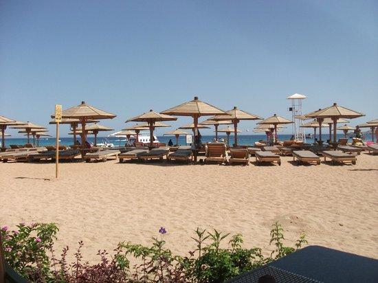 Sharm El Sheikh Marriott Resort: Beach