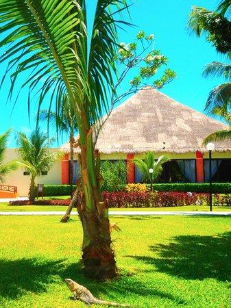 Grand Bahia Principe Coba: Coba snack bar right by pool