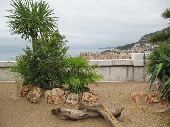 Oceanographic Museum of Monaco: музей