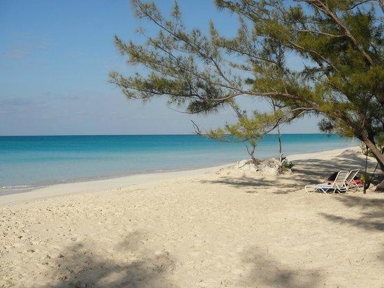 Pigeon Cay Beach Club : Beach