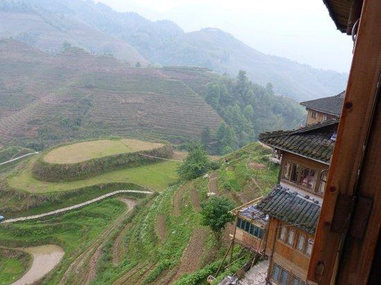 LongJi Terraces Tian ranju Inn : Vue de la chambre