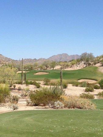 Golf Club of Estrella : Hole #15