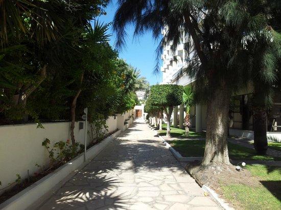 Elias Beach Hotel: Аллея на территории гостиницы